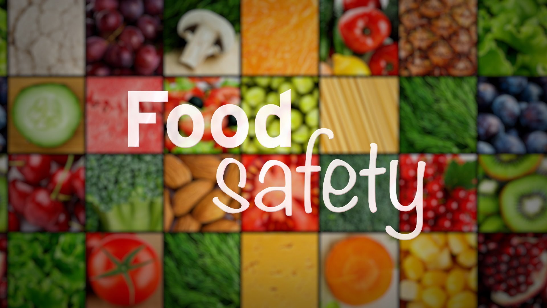 MMCL Food Safety TOT